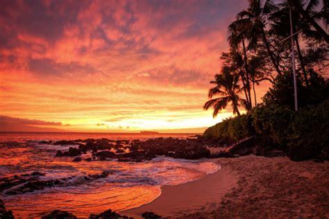 married  paradise  makena cove  maui hawaii
