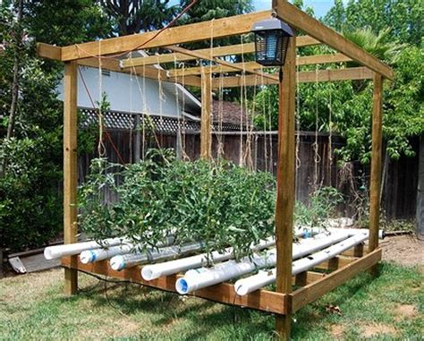 Small Hydroponic System For Home Home Website Of Kivuturn