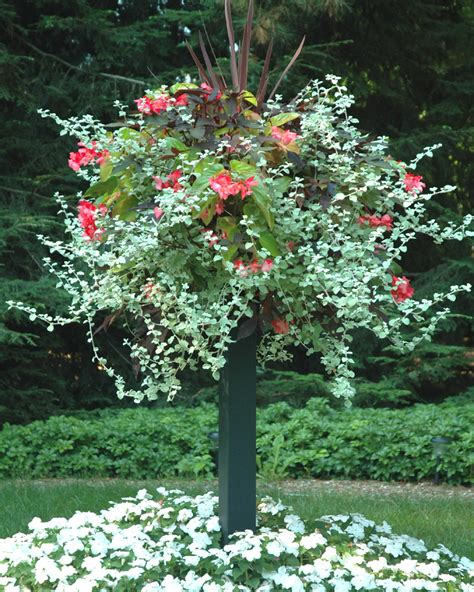 Floral Planters by 1000 Images About Flowers In Planters Urns And More On