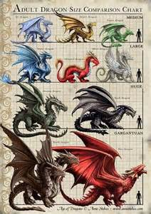 dragon size chart by anne stokes dragons