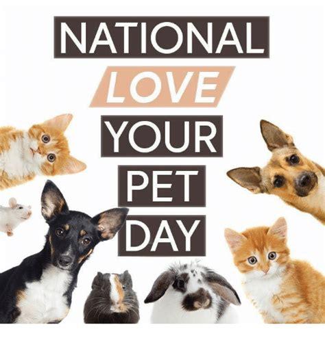 national love  pet day love meme  meme