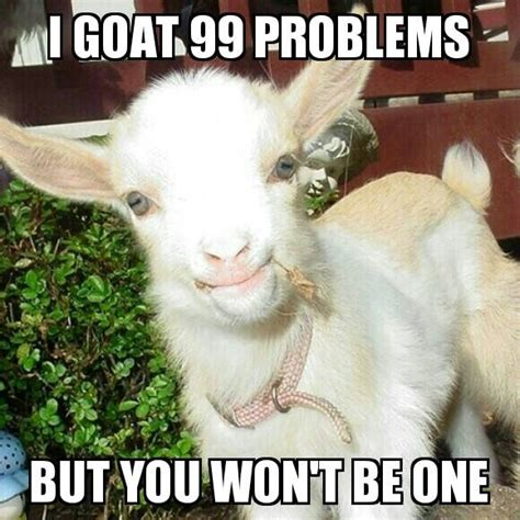 Funny Goat Memes - i goat 99 problems but you won t be one funny goat meme