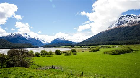 green wallpaper nz new zealand landscapes pasture with green grass thick