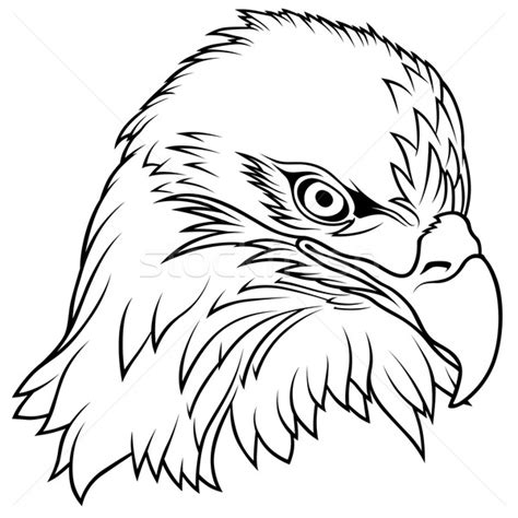 eagle feather coloring page bald eagle feather coloring page pictures to pin on