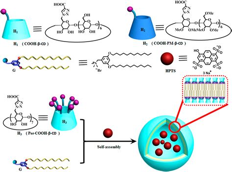 polyanionic cyclodextrin induced supramolecular