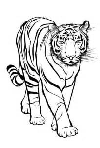 sch 246 ne malvorlagen ausmalbilder tiger ausdrucken 1