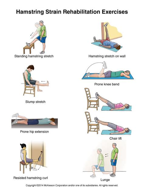 image gallery hamstring exercises