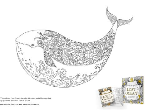 coloring book lost colour a whale downloadable lost postcard