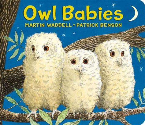 owl picture book owl babies by martin waddell benson lorelei king