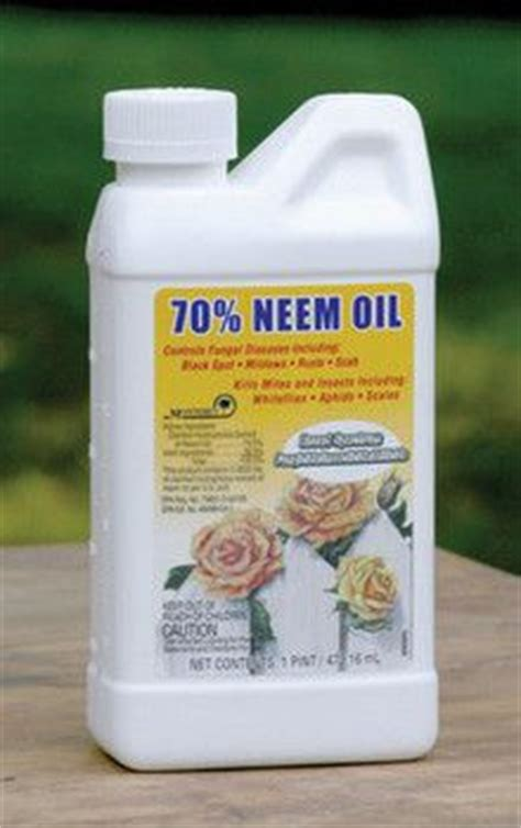 Garden Safe Neem by 1000 Images About Everything Neem Quot The Pharmacy