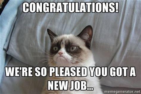 Funny Congratulations Meme - congratulations we re so pleased you got a new job