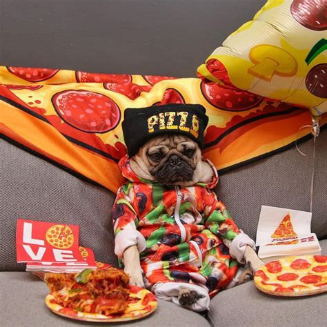 pug pizza the gallery for gt mug png