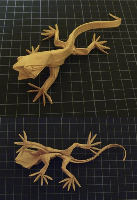 Origami Lizard Diagram - the origami forum view topic detailed lizard