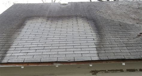 indy power wash roof cleaning algae mold  moss