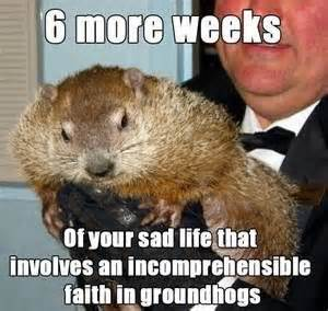 groundhog day uk tv groundhog day memes from punxsutawney phil