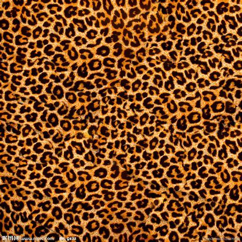 imagenes de uñas animal prin 豹皮设计图 背景底纹 底纹边框 设计图库 昵图网nipic com