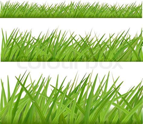 grass wallpaper border  grasscloth wallpaper