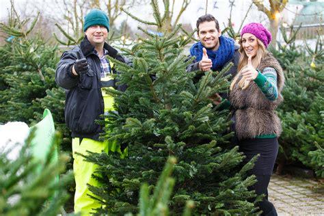 weihnachtsbaum verkauf weihnachtsb 228 ume europa