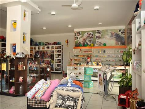 puppy shops pet shops in ludhiana pet stores in ludhiana pet care ludhiana