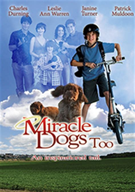 Miracle Dogs Free Miracle Dogs Kijk Nu Bij Path 233 Thuis