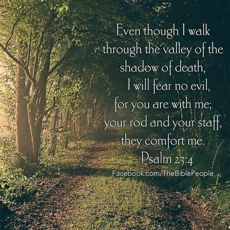 bible verse may the god of all comfort psalms bible verses and favorite bible verses on pinterest