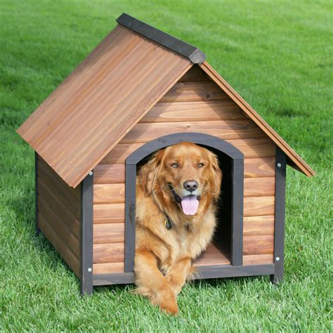 used dog houses for large dogs dog houses large dogs dog houses with image 183 involvery 183 storify