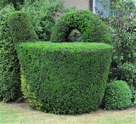 Buchsbaum In Form Schneiden 2025 by Garten Anders Formschnitt F 252 R Geh 246 Lze Beispiele Und Tipps
