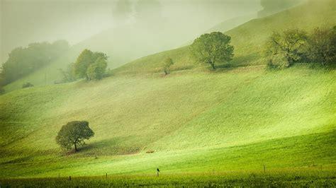 nature landscape hill trees austria grass field