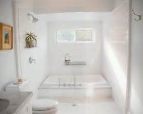 Big Bathtubs With Showers by Large Tub Shower Combo Downtown Compound