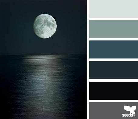 best color combinations with black best 25 black color palette ideas on pinterest winter