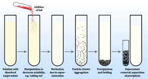 Process Of Precipitation And Its Application In Pharmacy Precipitation Chemistry Encyclopedia Article Citizendium