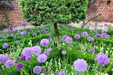 In Gardens And Flowers Plants Gardens Archives Matthew P Wright Photography