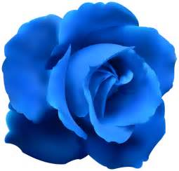 Blue rose clip art png image png m 1471225101