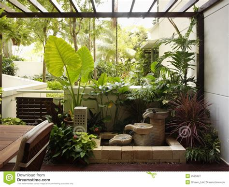 interior garden plants modern style indoor pond garden advice for your home