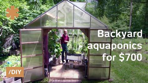 backyard aquaponics diy system  farm fish