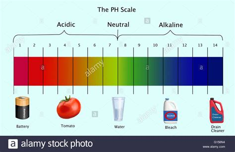 ph diagram diagram of the ph scale with exles of acidic neutral