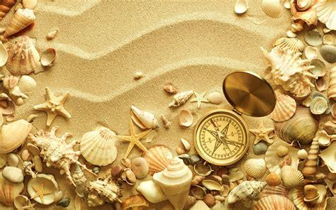 shell wallpaper beach sand shell compass travel bokeh wallpaper