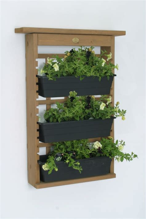 hanging baskets  home depot canada
