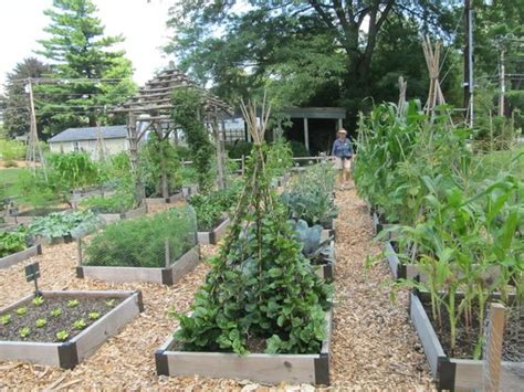Berkshire Botanical Garden Vegetable Garden Picture Of Berkshire Botanical Garden Stockbridge Tripadvisor