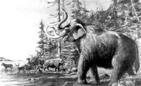 animal during great ice age ice age animals of utah utah geological survey