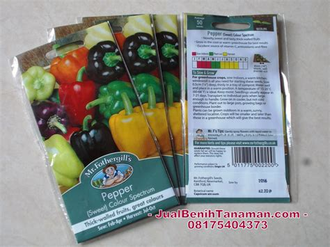 Jual Bibit Bunga Warna Warni jual benih paprika warna warni pepper sweet colour