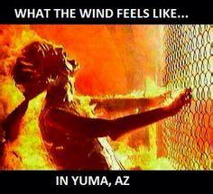 Arizona Heat Meme - 1000 images about arizona humor on pinterest arizona