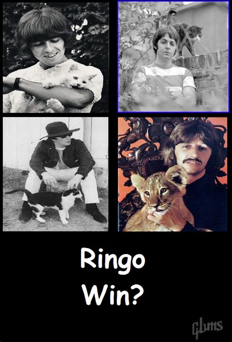 Beatles Meme - the beatles and his cats the beatles meme by gbms on