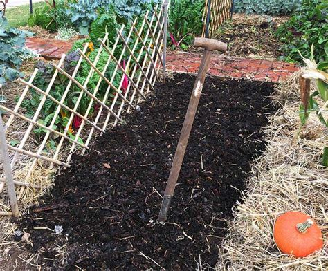 Manure For Garden by Gardening With Manure Corner