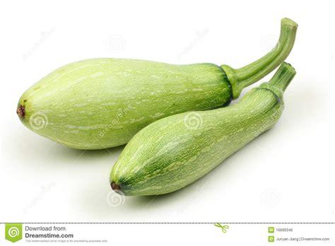 Green Zucchini T1310 2 green zucchini royalty free stock image image 16666346