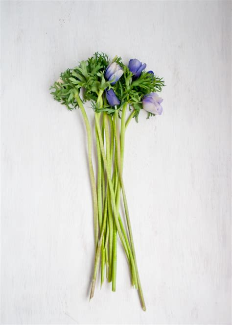 Bunch Of Flowers In A Vase Living Well 10 Secrets For Extending The Life Of Cut