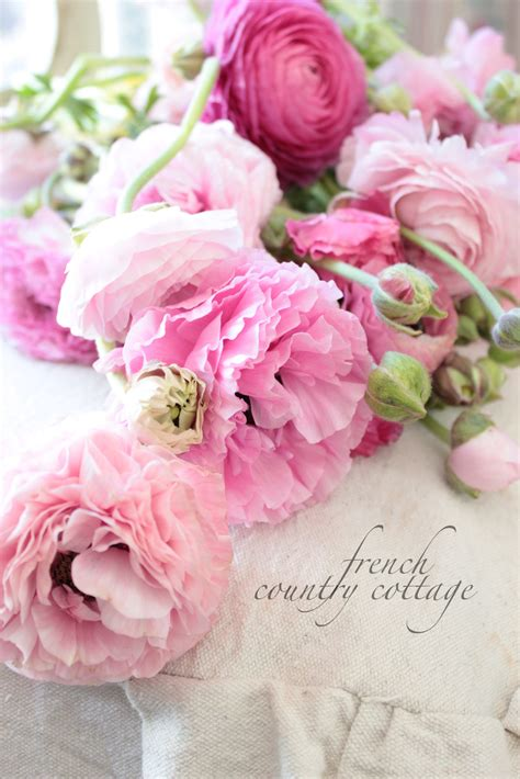 Country Cottage Flowers by Decorating With Dried Flowers Country Cottage
