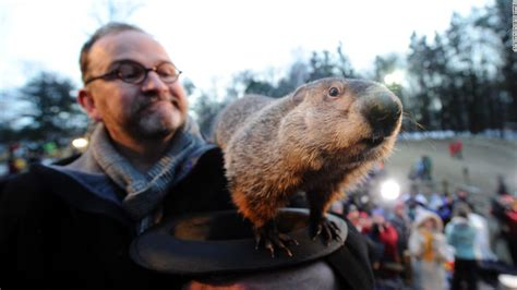 groundhog day tradition groundhog day 2016 punxsutawney phil sees early cnn