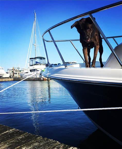 carefree boat club milford ct 14040198 198411020574756 6614370589730789009 n carefree