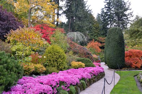 Butchart Gardens Discount by Butchart Gardens Fall Photo Gallery Cvs Butchart Gardens Tour